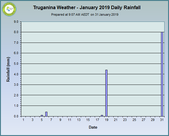 graph of January 2019 daily rainfall at Truganina Weather